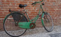 The vintage bicycles of Lucca, Italy
